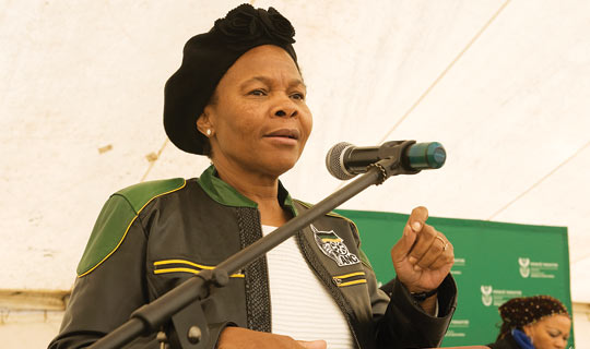 Minister Susan Shabangu addresses the gathering at the WASP project launch on 31 August [photograph]